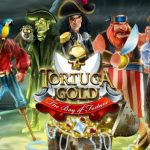 Описание игрового автомата Tortuga gold